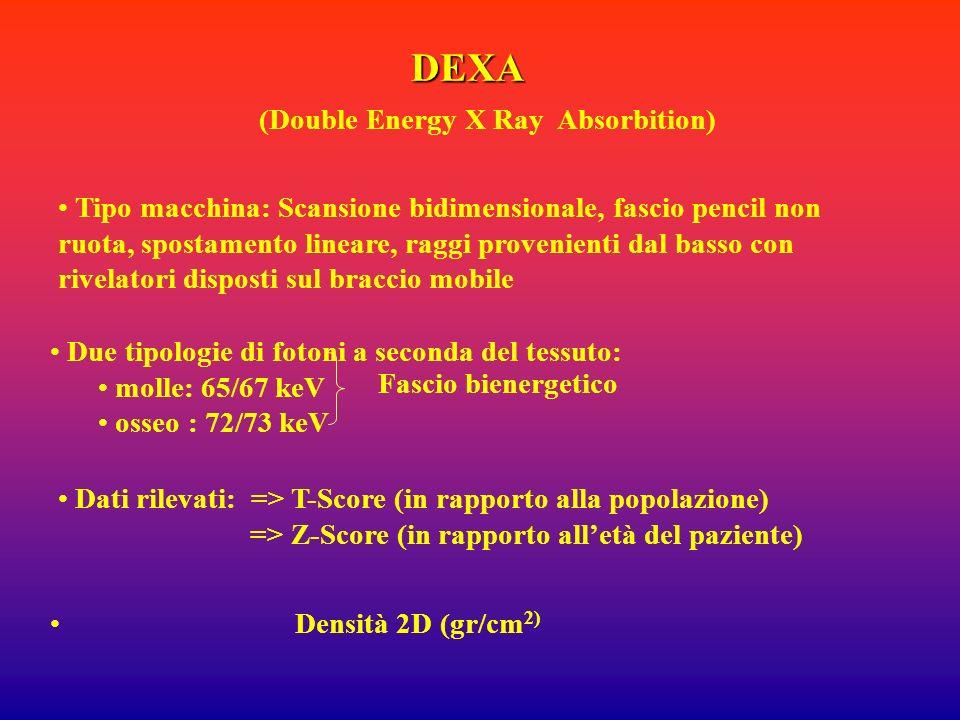 DEXA Tipo macchina: Scansione bidimensionale, fascio pencil non ruota, spostamento lineare, raggi provenienti dal basso con rivelatori disposti sul br