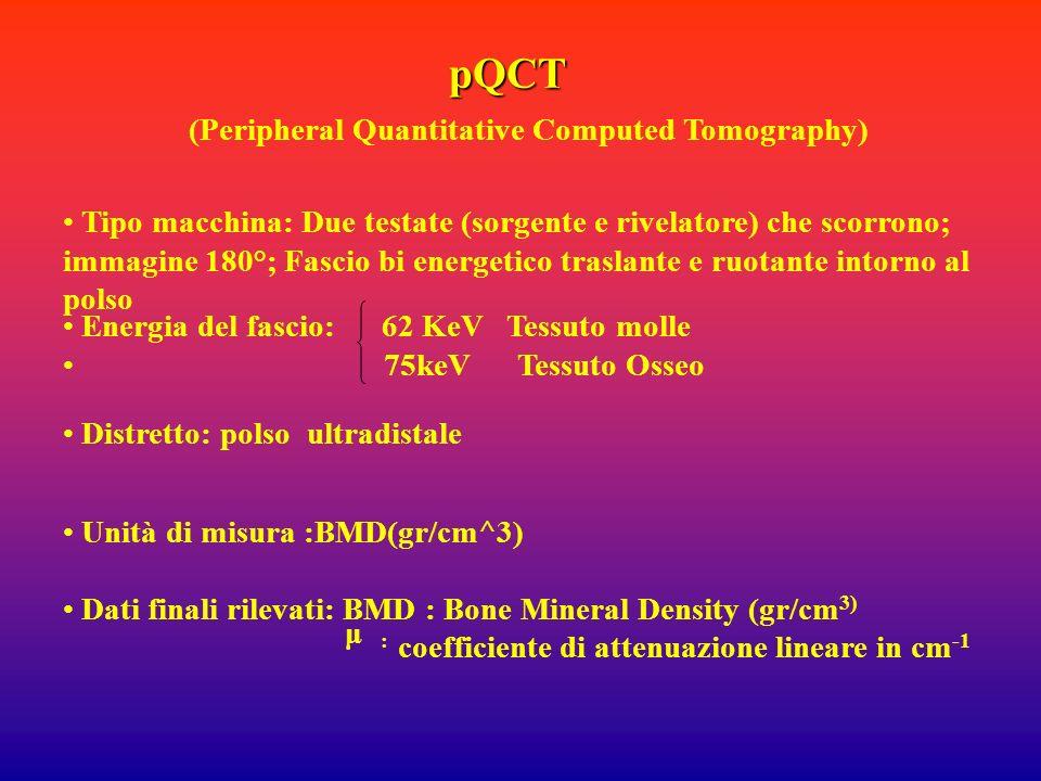 pQCT Tipo macchina: Due testate (sorgente e rivelatore) che scorrono; immagine 180°; Fascio bi energetico traslante e ruotante intorno al polso (Perip