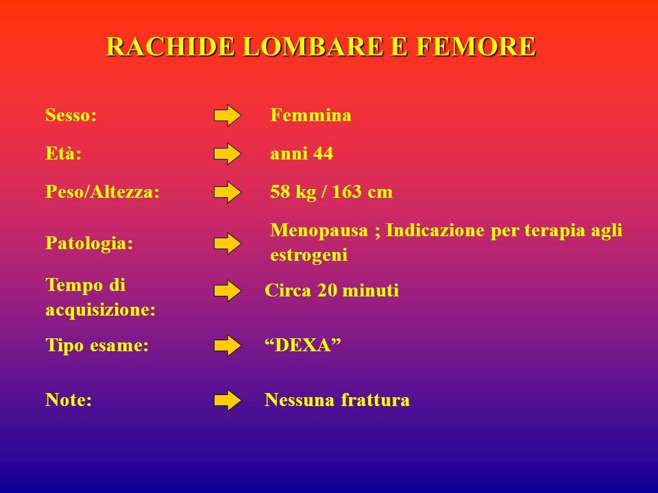 RACHIDE LOMBARE E FEMORE Femmina anni 44 Menopausa ; Indicazione per terapia agli estrogeni DEXA Sesso: Età: Patologia: Tipo esame: 58 kg / 163 cmPeso