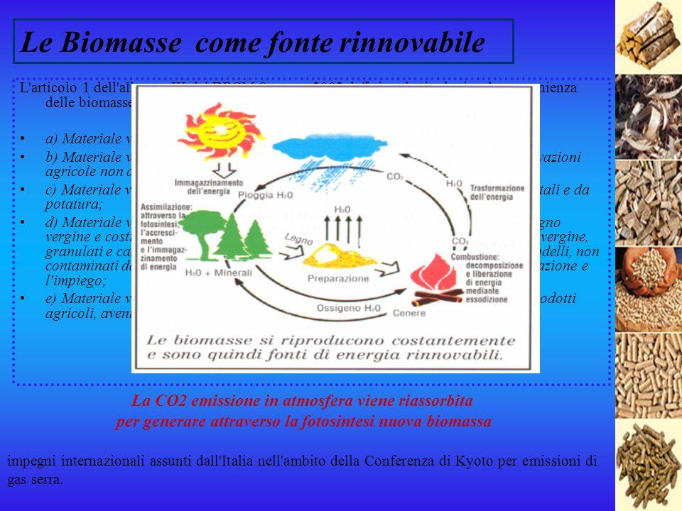 Energia dalle Biomasse Corso di Principi di Ingegneria Elettrica LS – A.A. 2006/2007