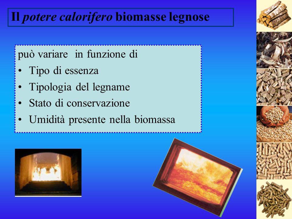 Relazione Tecnica sulle Biomasse Legnose La biomassa legnosa :le sue forme Legna a pezzi - adatto a stufe e caminetti Pallet - legnoso più adatto alle utenze domestiche.