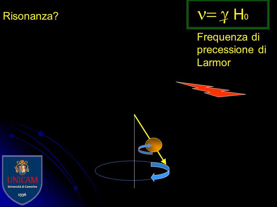 Ho N - /N + =e - E/kT N-N- N+N+ E= h H o E=h H o Diagramma dellenergia Livelli degeneri