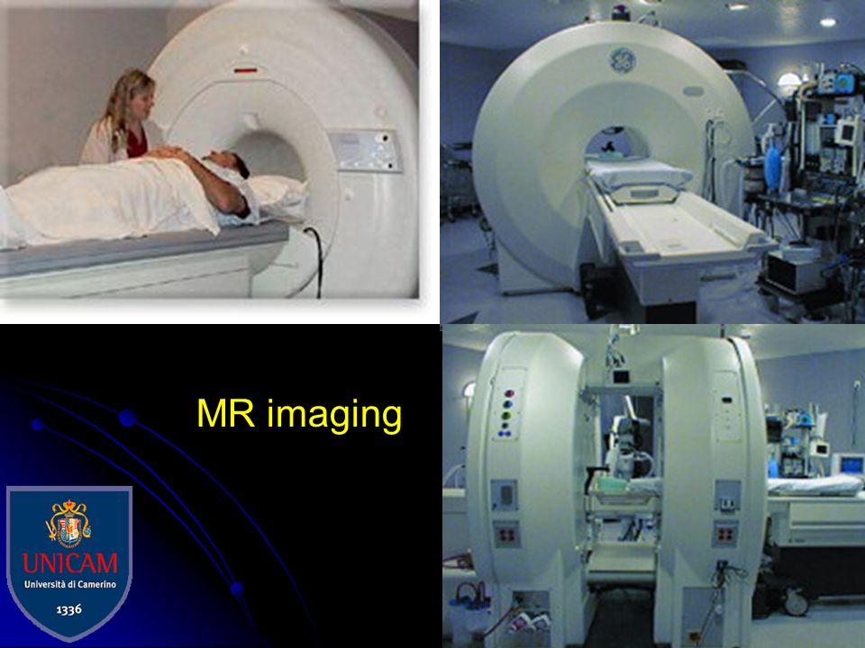 Immagini per retroproiezione