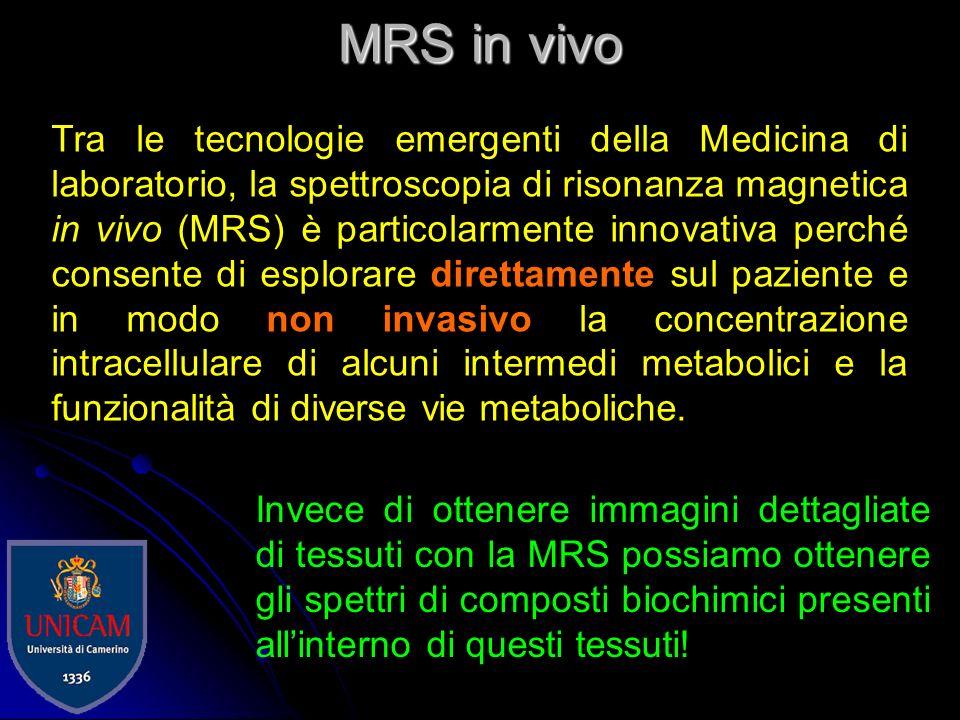 MR imaging