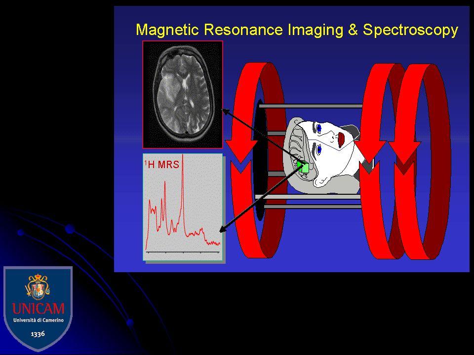 Tra le tecnologie emergenti della Medicina di laboratorio, la spettroscopia di risonanza magnetica in vivo (MRS) è particolarmente innovativa perché c
