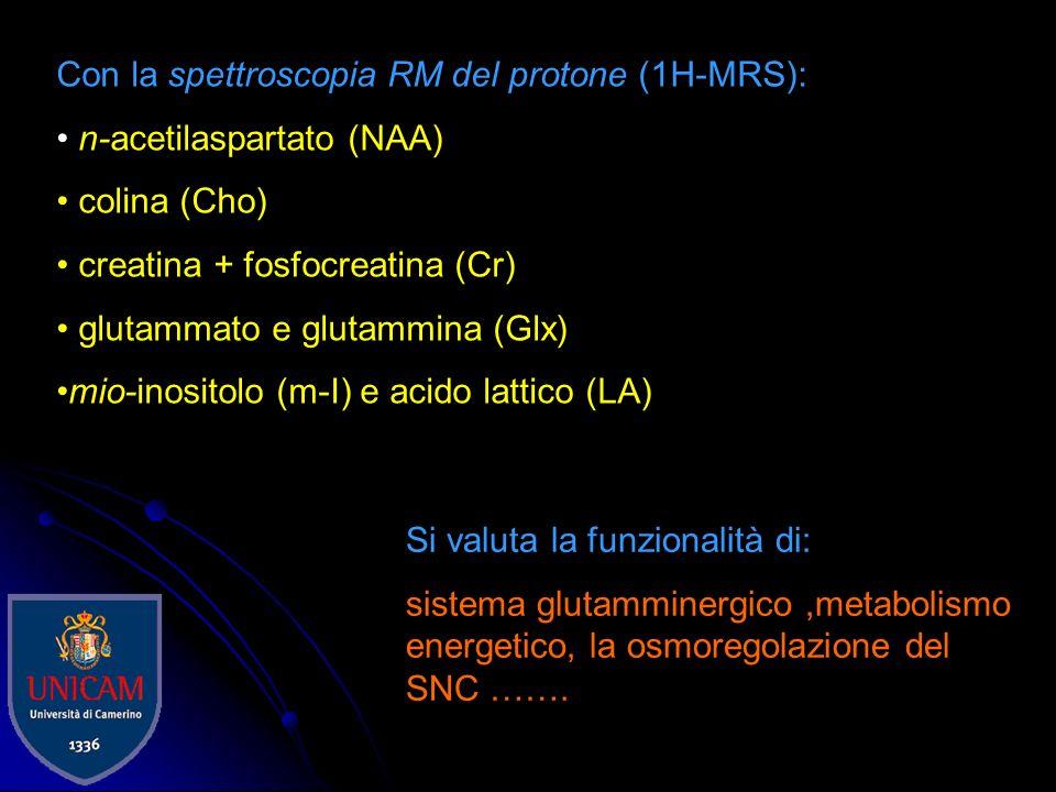 Con la spettroscopia RM del fosforo (31P-MRS): ATP fosfato inorganico (Pi) fosfocreatina (PCr) intermedi metabolici fosforilati (PME e PDE) concentraz