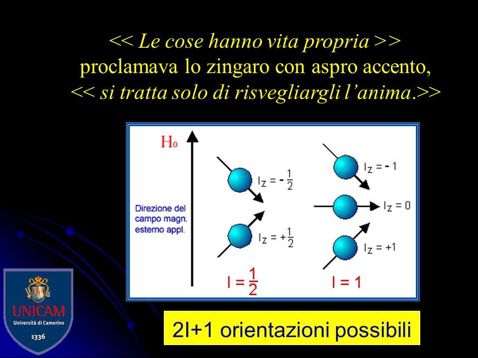 Momenti magnetici nucleari I nuclei hanno spin e sono carichi + ogni particella carica in moto produce un campo magnetico. ogni nucleo con un momento