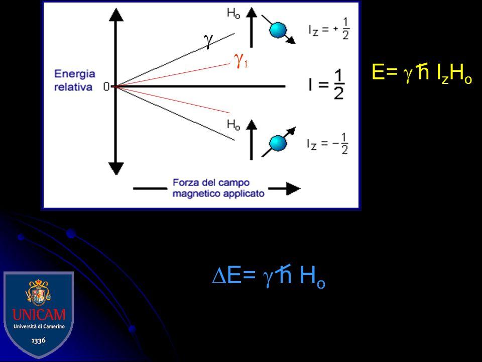 I campioni vengono polverizzati finemente, impaccati nel rotore e quindi messi in rotazione ad una velocità compresa tra 1 e 35 KHz Limitata utilità nei nuclei come 1 H e 19 F poiché gli accoppiamenti dipolari superano i 100 KHz.