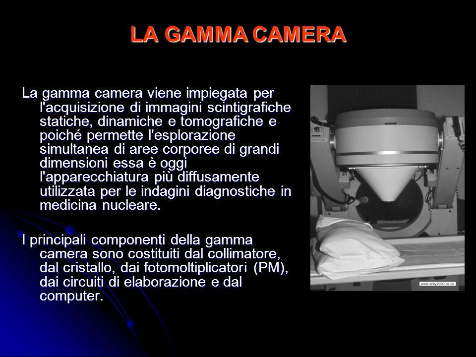 LA GAMMA CAMERA La gamma camera viene impiegata per l'acquisizione di immagini scintigrafiche statiche, dinamiche e tomografiche e poiché permette l'e