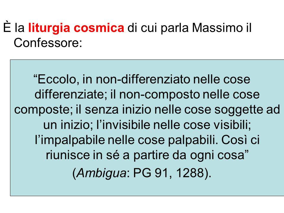 È la liturgia cosmica di cui parla Massimo il Confessore: Eccolo, in non-differenziato nelle cose differenziate; il non-composto nelle cose composte;