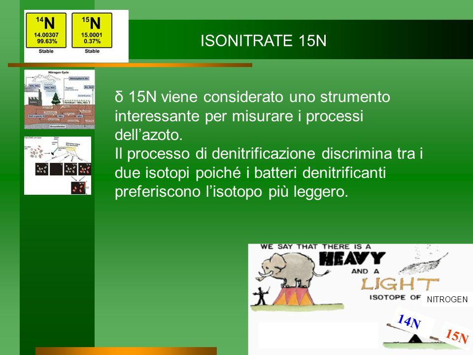 NITROGEN 14N 15N ISONITRATE 15N δ 15N viene considerato uno strumento interessante per misurare i processi dellazoto. Il processo di denitrificazione