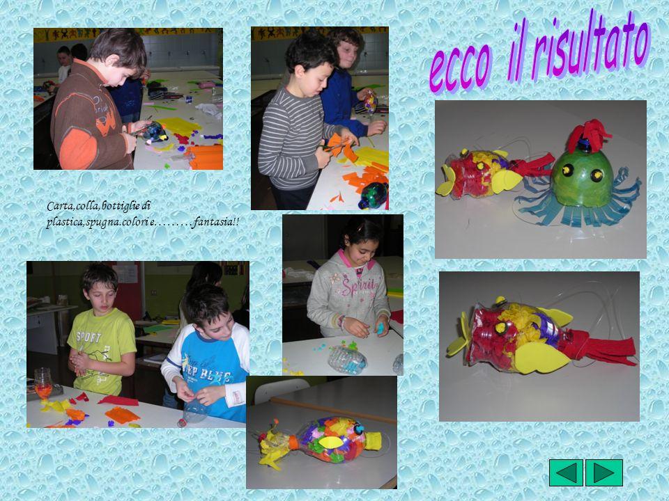 Carta,colla,bottiglie di plastica,spugna.colori e………fantasia!!
