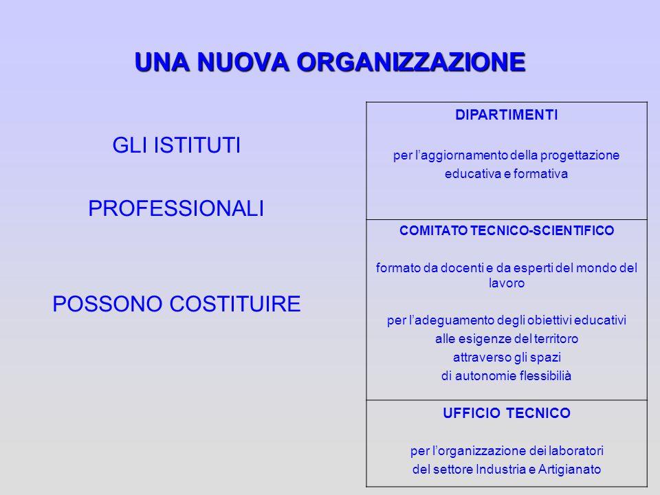 UNA NUOVA ORGANIZZAZIONE GLI ISTITUTI PROFESSIONALI POSSONO COSTITUIRE DIPARTIMENTI per laggiornamento della progettazione educativa e formativa COMIT