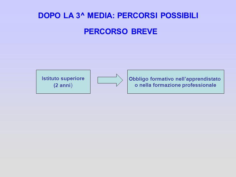 DOPO LA 3^ MEDIA: PERCORSI POSSIBILI PERCORSO BREVE Istituto superiore (2 anni ) Obbligo formativo nellapprendistato o nella formazione professionale