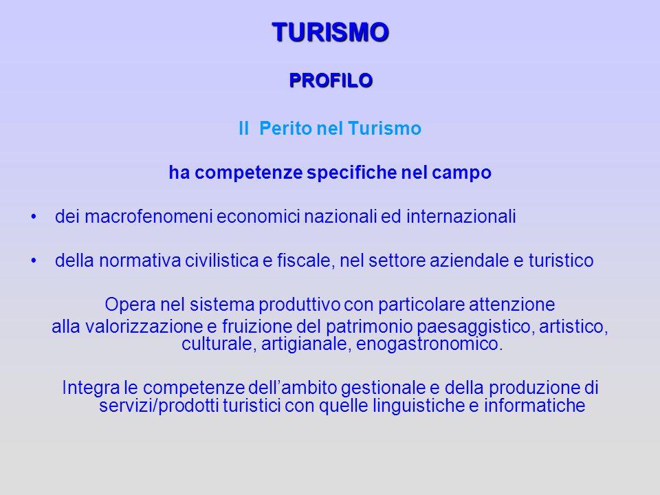 TURISMO PROFILO Il Perito nel Turismo ha competenze specifiche nel campo dei macrofenomeni economici nazionali ed internazionali della normativa civil