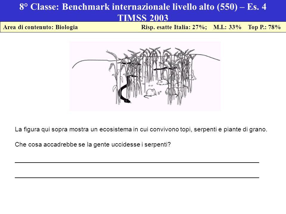 8° Classe: Benchmark internazionale livello alto (550) – Es.