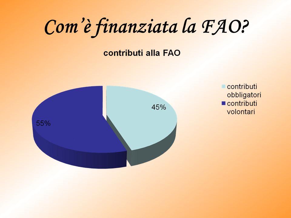 LITALIA CON LA FAO Il governo italiano ha lanciato il Programma di cooperazione decentrata Italia-FAO, uniniziativa pilota volta a promuovere la partecipazione delle autorità locali italiane nei progetti della FAO nel quadro della sicurezza alimentare mondiale.