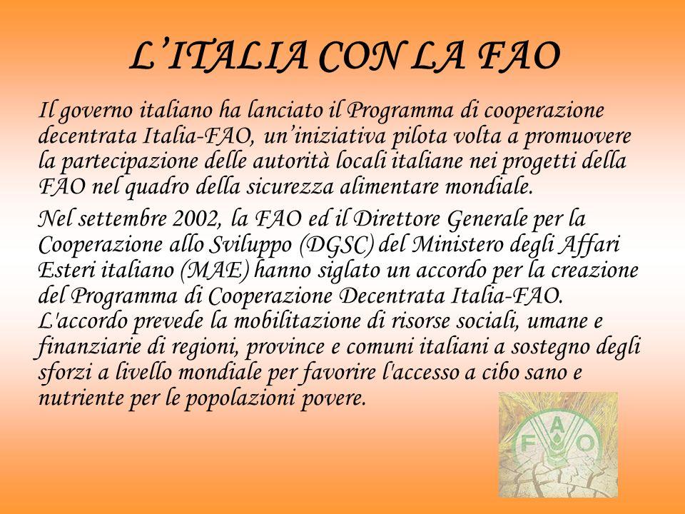 Nel 1991 divenne consultore del Pontificio Consiglio della Giustizia e della Pace, e successivamente membro della Pontificia Accademia delle Scienze Sociali.