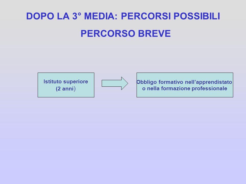 DOPO LA 3° MEDIA: PERCORSI POSSIBILI PERCORSO BREVE Istituto superiore (2 anni ) Obbligo formativo nellapprendistato o nella formazione professionale