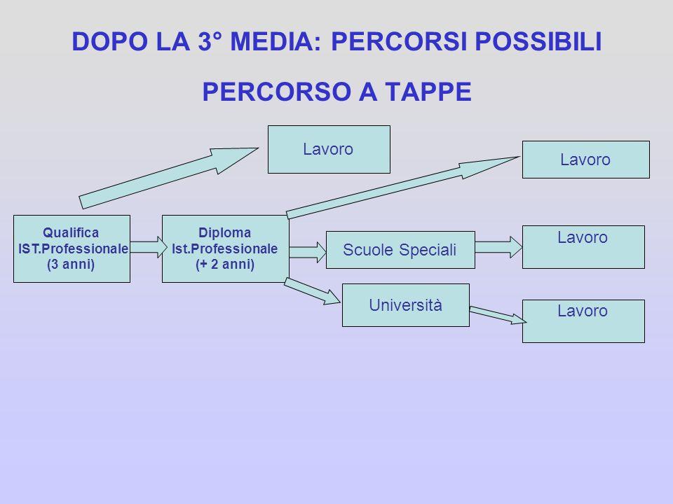 DOPO LA 3° MEDIA: PERCORSI POSSIBILI PERCORSO LUNGO Diploma Ist.