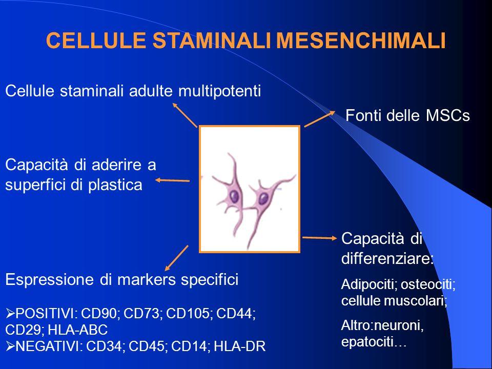 CELLULE STAMINALI MESENCHIMALI Cellule staminali adulte multipotenti Capacità di aderire a superfici di plastica Espressione di markers specifici POSITIVI: CD90; CD73; CD105; CD44; CD29; HLA-ABC NEGATIVI: CD34; CD45; CD14; HLA-DR Capacità di differenziare: Adipociti; osteociti; cellule muscolari; Altro:neuroni, epatociti … Fonti delle MSCs