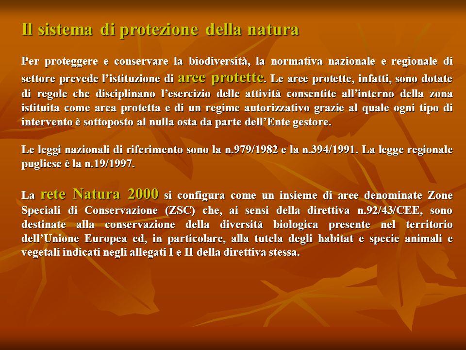 Il sistema di protezione della natura Per proteggere e conservare la biodiversità, la normativa nazionale e regionale di settore prevede listituzione di aree protette.