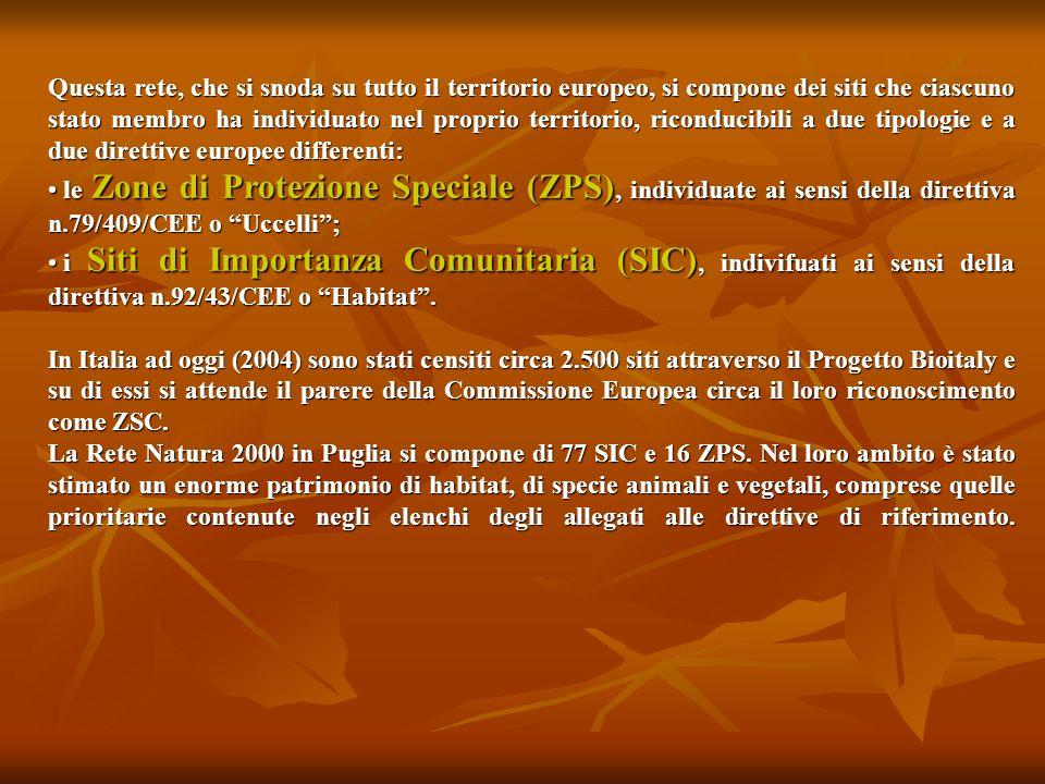 Questa rete, che si snoda su tutto il territorio europeo, si compone dei siti che ciascuno stato membro ha individuato nel proprio territorio, riconducibili a due tipologie e a due direttive europee differenti: le Zone di Protezione Speciale (ZPS), individuate ai sensi della direttiva n.79/409/CEE o Uccelli; le Zone di Protezione Speciale (ZPS), individuate ai sensi della direttiva n.79/409/CEE o Uccelli; i Siti di Importanza Comunitaria (SIC), indivifuati ai sensi della direttiva n.92/43/CEE o Habitat.