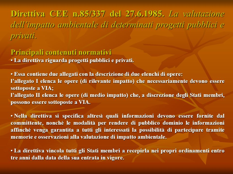Direttiva UE n.97/11 del 3.3.1997.