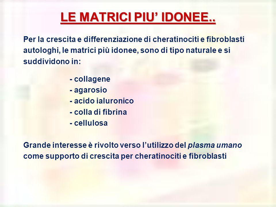 LE MATRICI PIU IDONEE.. Per la crescita e differenziazione di cheratinociti e fibroblasti autologhi, le matrici più idonee, sono di tipo naturale e si