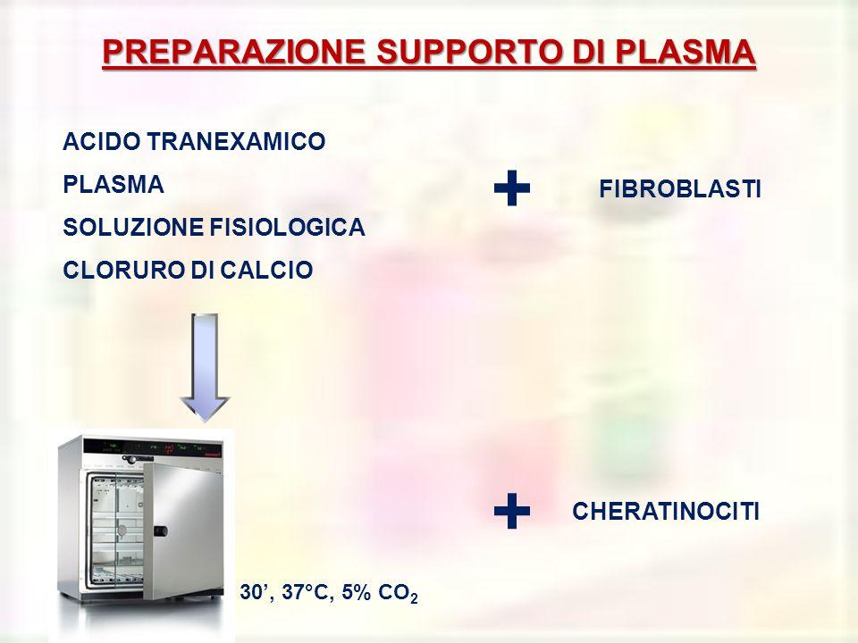 PREPARAZIONE SUPPORTO DI PLASMA ACIDO TRANEXAMICO PLASMA SOLUZIONE FISIOLOGICA CLORURO DI CALCIO FIBROBLASTI + + CHERATINOCITI 30, 37°C, 5% CO 2