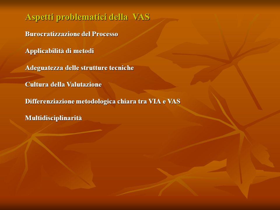 Aspetti problematici della VAS Burocratizzazione del Processo Applicabilità di metodi Adeguatezza delle strutture tecniche Cultura della Valutazione D