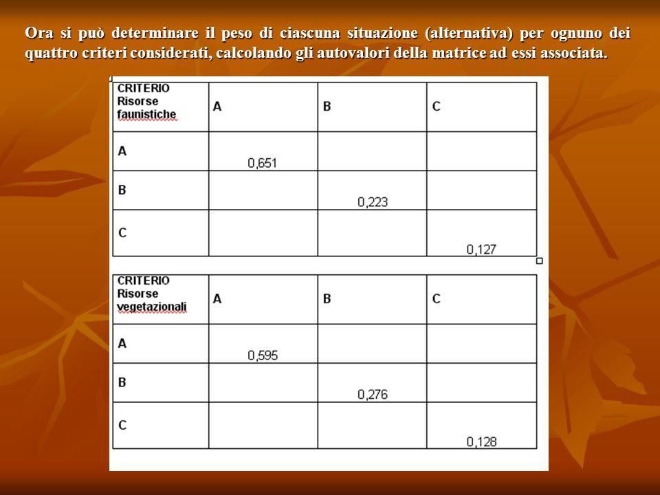 Ora si può determinare il peso di ciascuna situazione (alternativa) per ognuno dei quattro criteri considerati, calcolando gli autovalori della matric