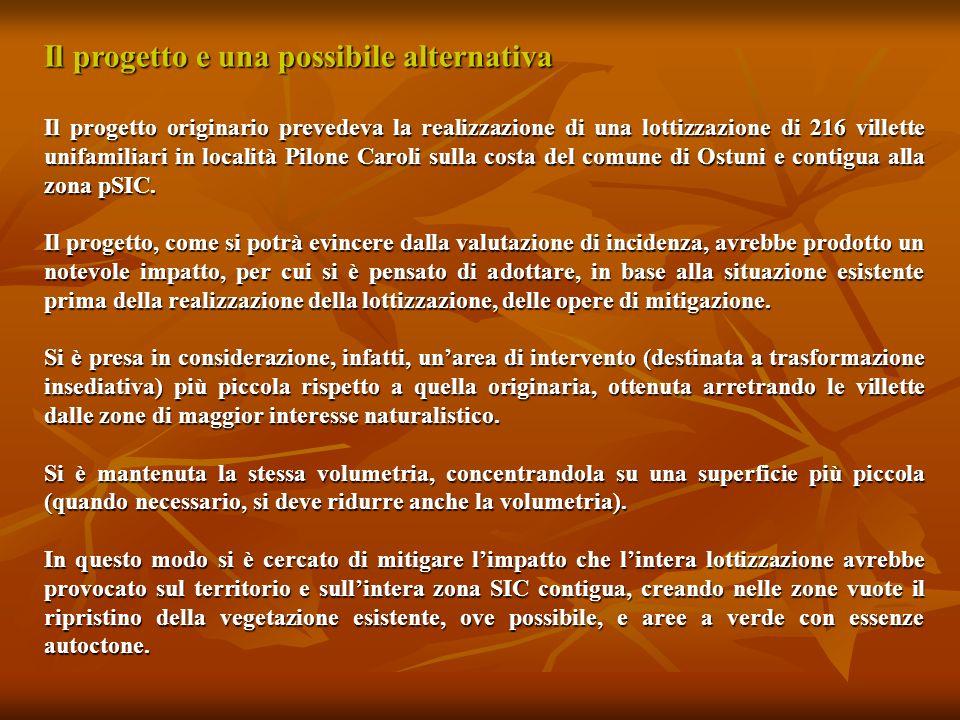 Il progetto e una possibile alternativa Il progetto originario prevedeva la realizzazione di una lottizzazione di 216 villette unifamiliari in localit
