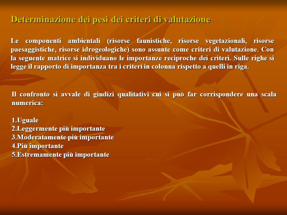 Determinazione dei pesi dei criteri di valutazione Le componenti ambientali (risorse faunistiche, risorse vegetazionali, risorse paesaggistiche, risor