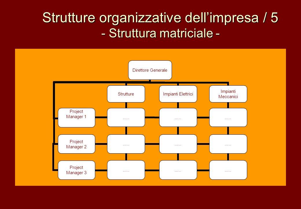 Strutture organizzative dellimpresa / 5 - Struttura matriciale -