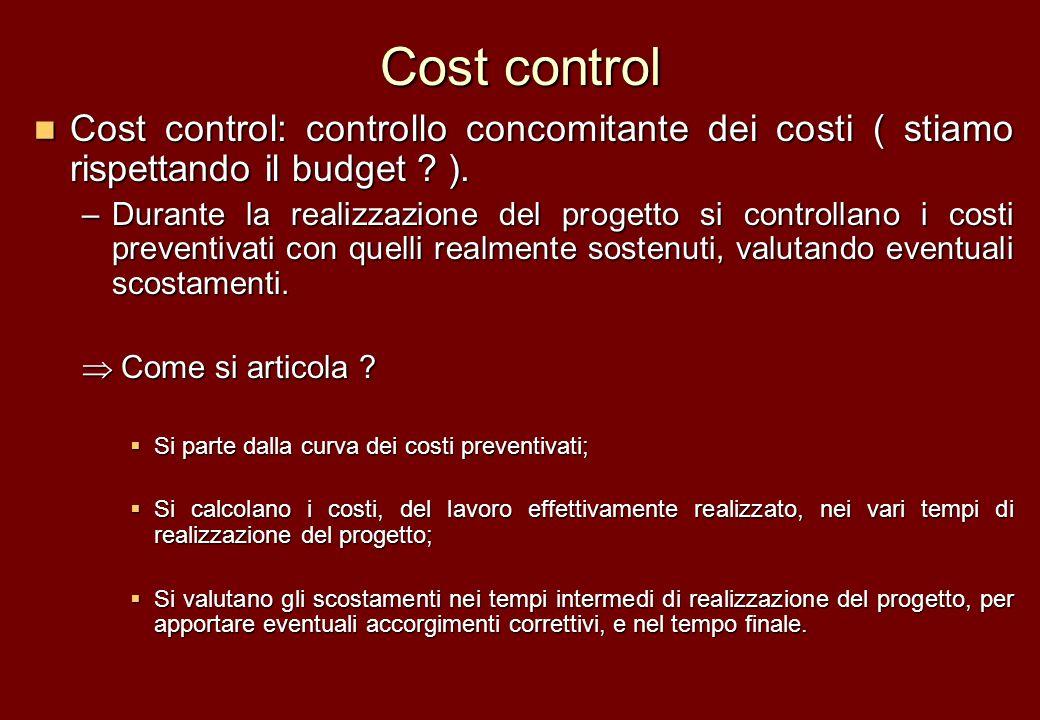 Cost control Cost control: controllo concomitante dei costi ( stiamo rispettando il budget ? ). Cost control: controllo concomitante dei costi ( stiam