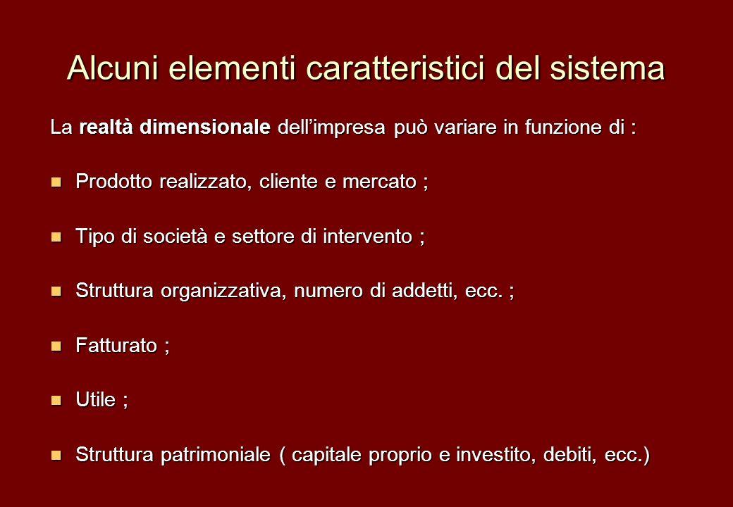 Alcuni elementi caratteristici del sistema La realtà dimensionale dellimpresa può variare in funzione di : Prodotto realizzato, cliente e mercato ; Pr