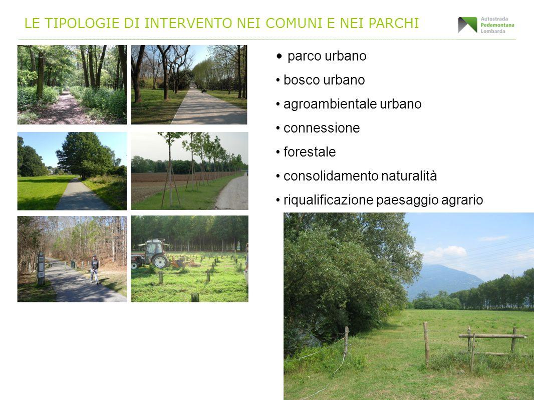 LE TIPOLOGIE DI INTERVENTO NEI COMUNI E NEI PARCHI parco urbano bosco urbano agroambientale urbano connessione forestale consolidamento naturalità riq