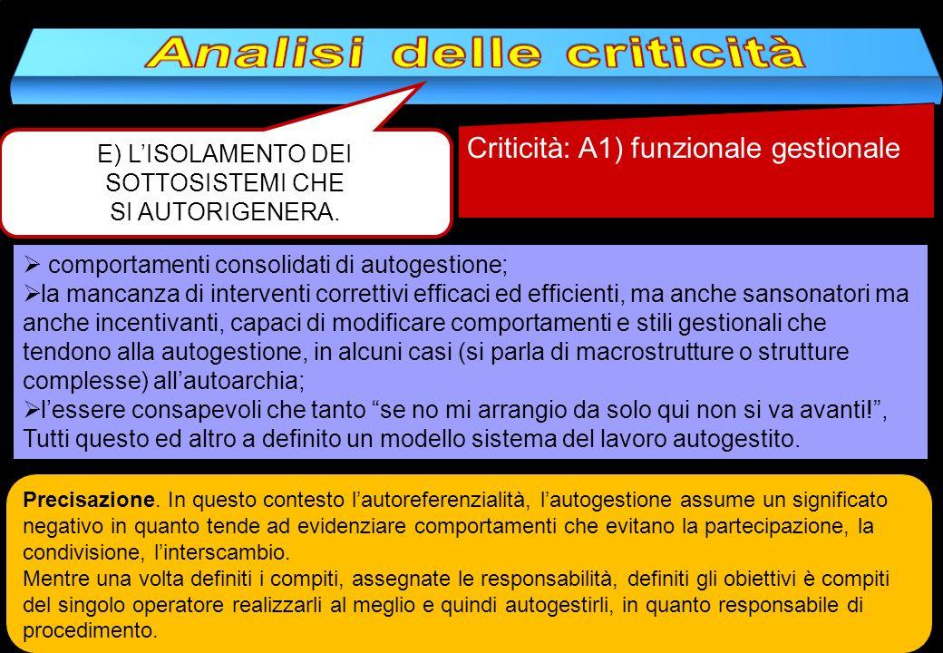E) LISOLAMENTO DEI SOTTOSISTEMI CHE SI AUTORIGENERA. Criticità: A1) funzionale gestionale comportamenti consolidati di autogestione; la mancanza di in