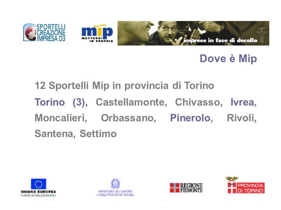 Dove è Mip 12 Sportelli Mip in provincia di Torino Torino (3), Castellamonte, Chivasso, Ivrea, Moncalieri, Orbassano, Pinerolo, Rivoli, Santena, Setti