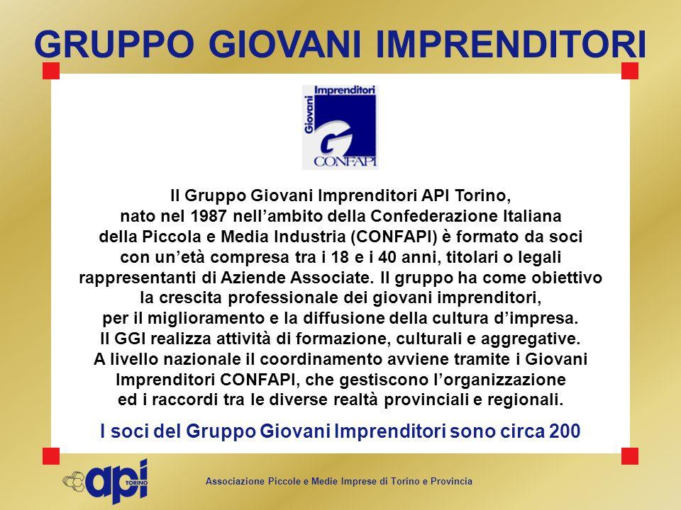Associazione Piccole e Medie Imprese di Torino e Provincia GRUPPO GIOVANI IMPRENDITORI Il Gruppo Giovani Imprenditori API Torino, nato nel 1987 nellam
