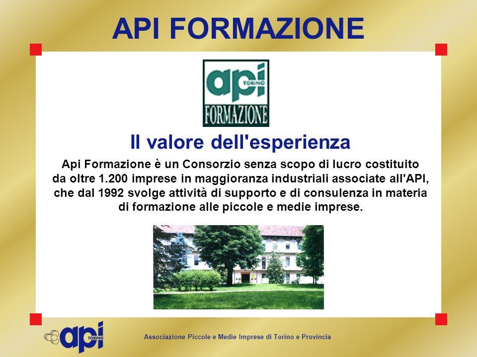Associazione Piccole e Medie Imprese di Torino e Provincia Il valore dell'esperienza Api Formazione è un Consorzio senza scopo di lucro costituito da