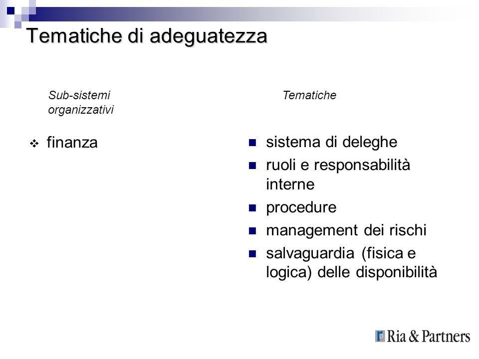 Tematiche di adeguatezza finanza sistema di deleghe ruoli e responsabilità interne procedure management dei rischi salvaguardia (fisica e logica) dell
