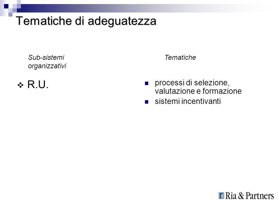 Tematiche di adeguatezza R.U. processi di selezione, valutazione e formazione sistemi incentivanti TematicheSub-sistemi organizzativi