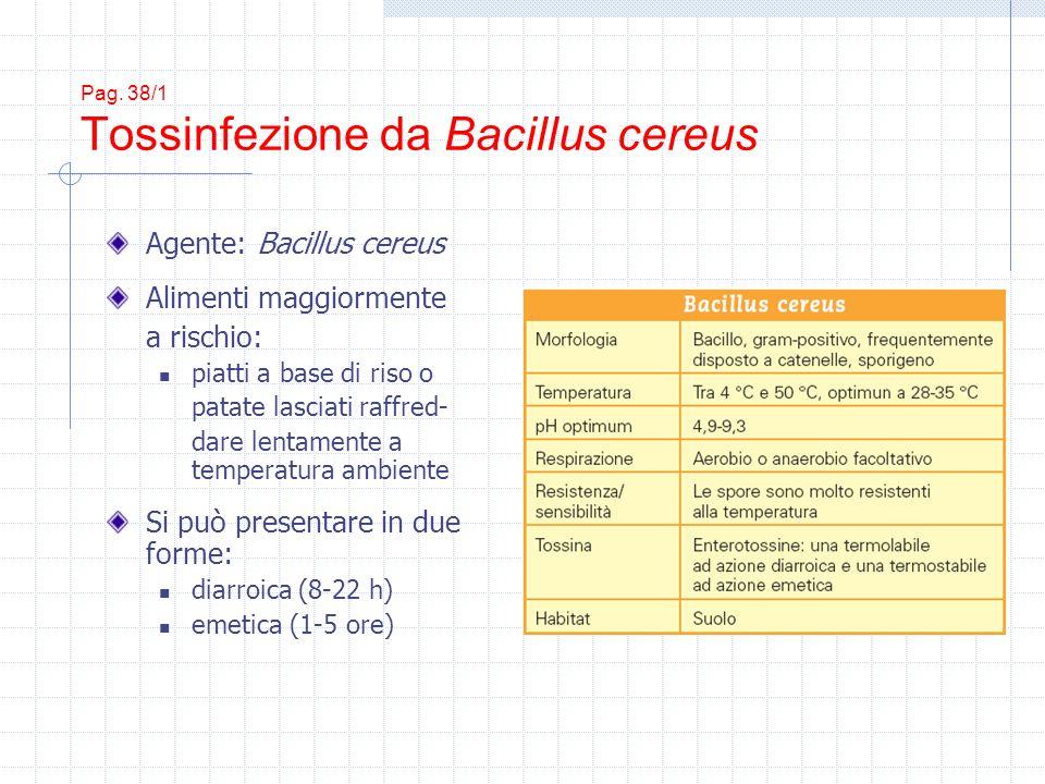 Pag. 38/1 Tossinfezione da Bacillus cereus Agente: Bacillus cereus Alimenti maggiormente a rischio: piatti a base di riso o patate lasciati raffred- d