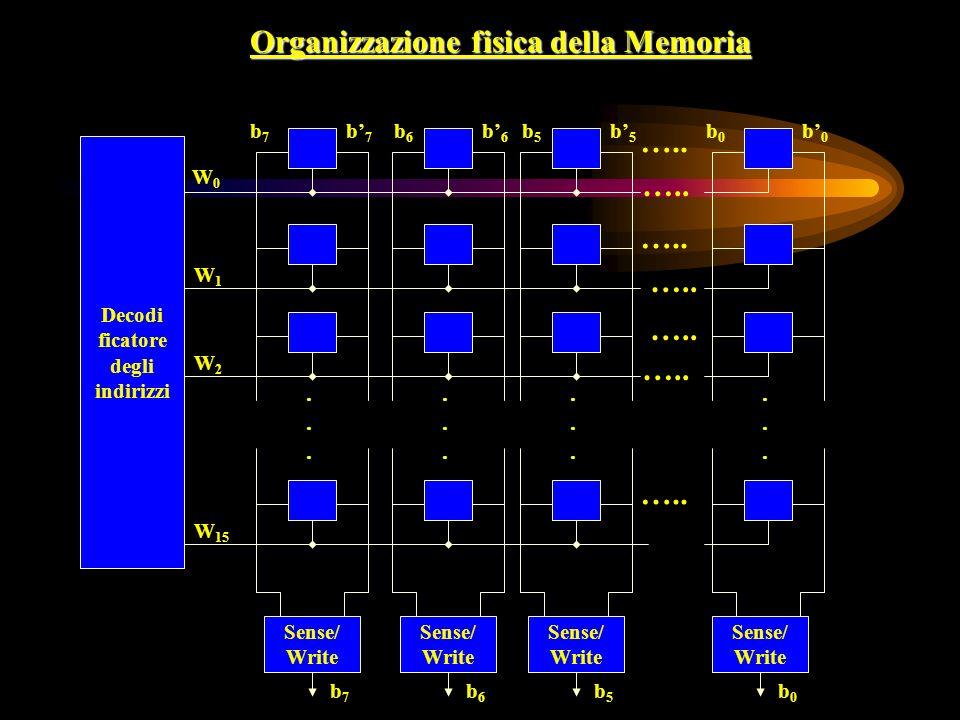 Organizzazione fisica della Memoria Decodi ficatore degli indirizzi …..........................
