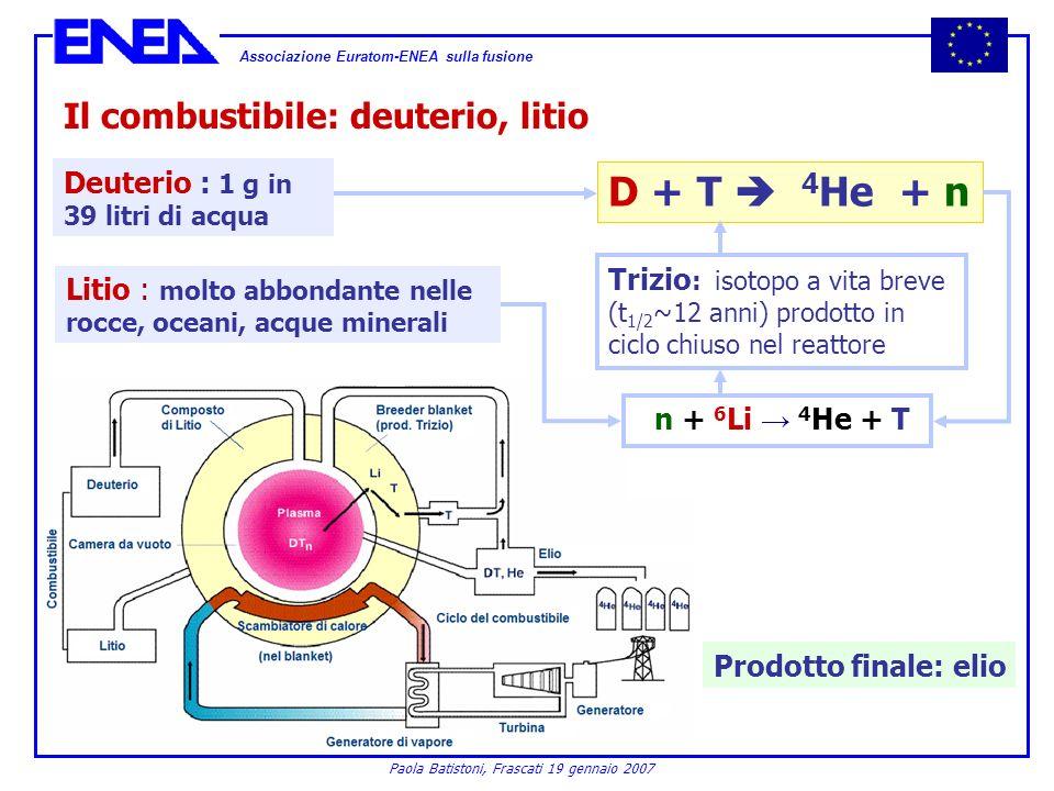 Associazione Euratom-ENEA sulla fusione Paola Batistoni, Frascati 19 gennaio 2007 Il combustibile: deuterio, litio n + 6 Li 4 He + T Trizio : isotopo