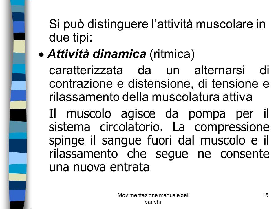 Movimentazione manuale dei carichi 13 Si può distinguere lattività muscolare in due tipi: Attività dinamica (ritmica) caratterizzata da un alternarsi