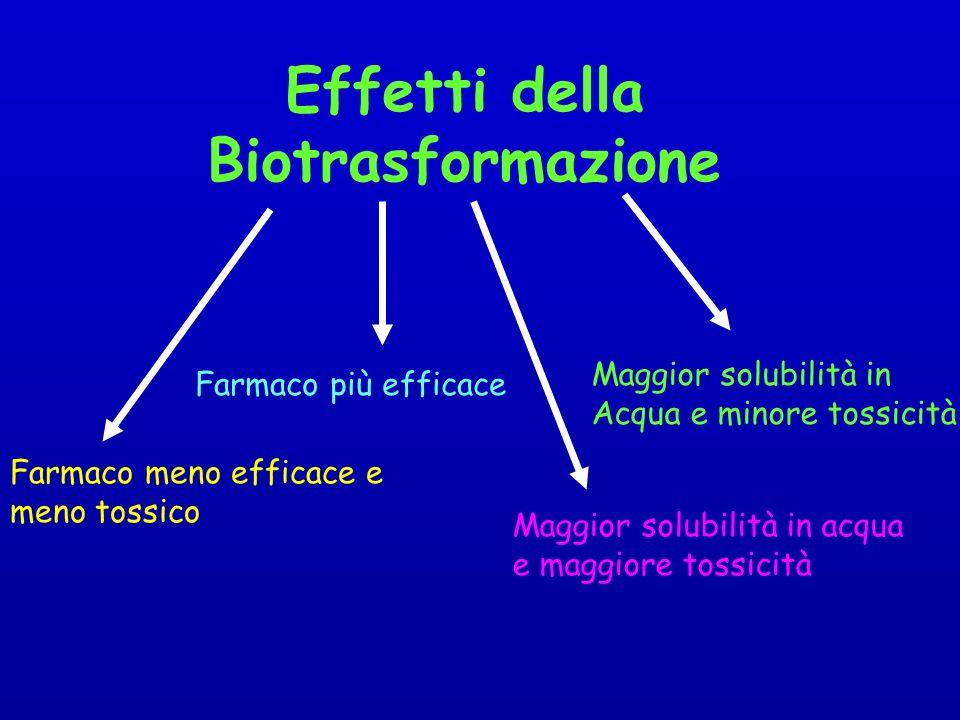 Effetti della Biotrasformazione Maggior solubilità in Acqua e minore tossicità Maggior solubilità in acqua e maggiore tossicità Farmaco più efficace Farmaco meno efficace e meno tossico