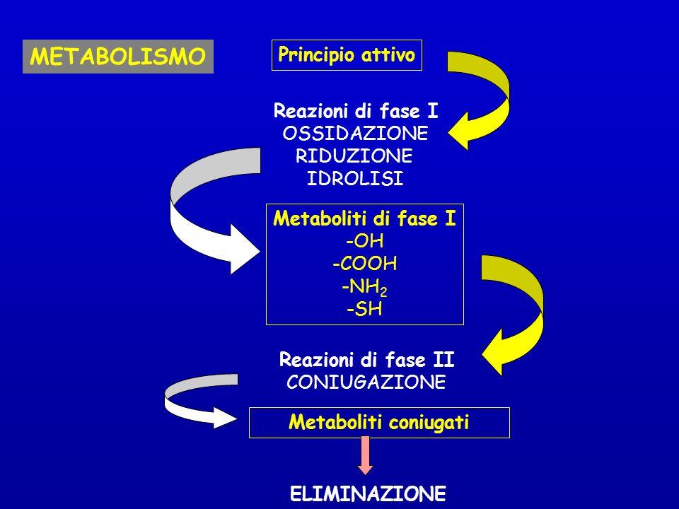 METABOLISMO Principio attivo Reazioni di fase I OSSIDAZIONE RIDUZIONE IDROLISI Metaboliti di fase I -OH -COOH -NH 2 -SH Reazioni di fase II CONIUGAZIONE Metaboliti coniugati ELIMINAZIONE